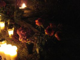 Candles and Roses by ZeldAlice