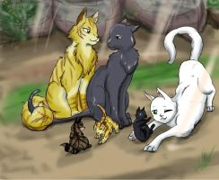 Lightrain and Goldpelt by Shizuri-chan