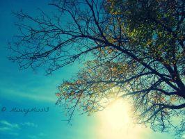 There's Always Light by Michies-Photographyy