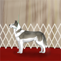 Anuk in Isengards Dog Show by AixaRawr