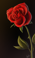 .:Rose:. by TechnicolorDog