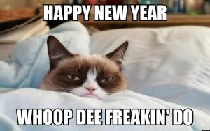 The Grumpy Cat: Happy New Year!!! :D by RockyToonz93