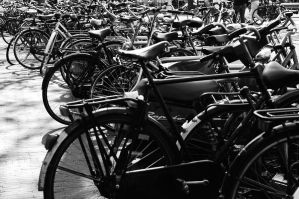 bicycle-s by bcharles