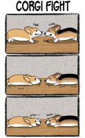 Corgi Logic - Corgi Fight by xHenri