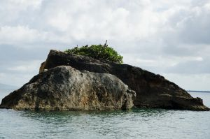 Los Haitises  National Park Dominican Republic 20 by FairieGoodMother