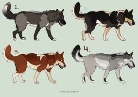 CLOSED ~ 4 Inexpensive Husky Adoptables by Animal-Canine-Adopts