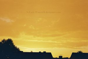 Yellow Sky by LadyxWinter