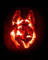 German Shephard Jack-O-Lantern by Revelation-Six