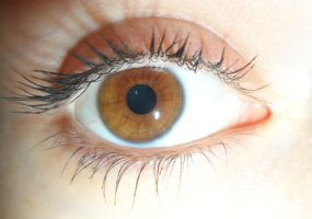 Brown eyed girl by josephinebruce