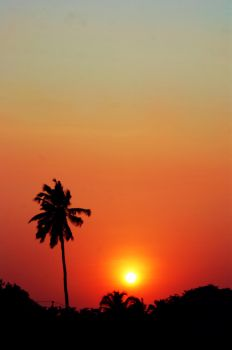 Indian Silhouette by XantheRowland