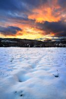 Welcome in Winter by FlorentCourty