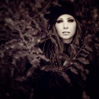 Herbstwind by Drastique-Plastique