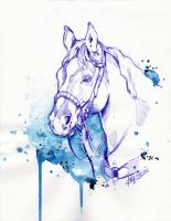 Rodeo Blue by Marievarp