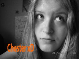 Chester ID 2009 by Chesters-iffy-artxD