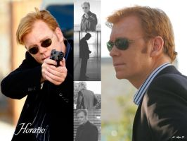 Horatio Caine by VampiresLady