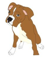Boxer Puppy by loner654