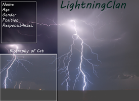 LightningClan Ref Sheet by DracKeagan