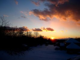 Winter Sun 2011 by DaftBrian