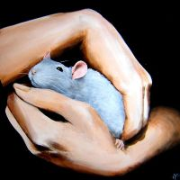 le rat et l'amour by Annie-Claudine