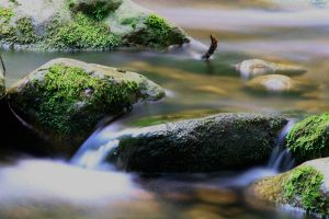 A Study in Flowing Water XIV by ChrisTheJeweler