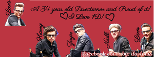 One Direction Facebook Cover for GuyBelle by iluvlouis