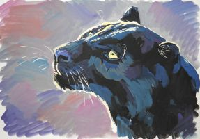 Panther by ptichkaG