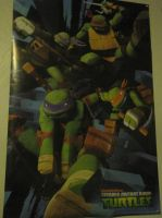 Teenage mutant ninja turtles Poster by NinjaAnimeHero