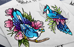 Blue jays by quidames
