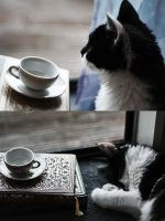 Lucy - tea and nap by sayra