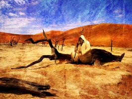 The Wanderer in the Desert by R55359474327