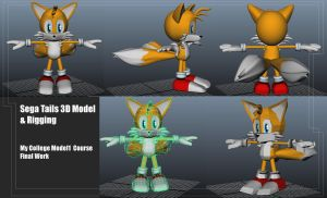 Tails Model by Teyas