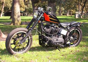 79 Ironhead Shovel. by StallionDesigns