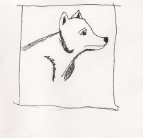 Wolf by JMW14