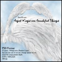 Angel Wings r Beautiful Things by Dani3D