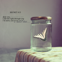 Secret 13 by HahaaCakes
