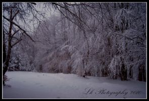 winter tableau by Lk-Photography