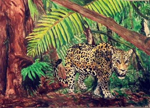 Jaguar in the Jungle by MickeyRayRex