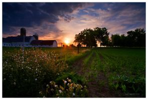 Wisconsin Farm by leavenotrase
