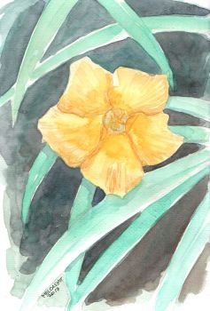 Yellow Bell by melcasipit