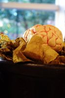 Bokeh and the Brain by PlutoHasCows