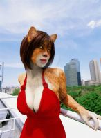 Catgirl Photomanip by cqmorrell