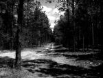 Lonesome Road by WLM8288