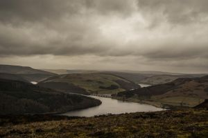 Lady Bower by jimited