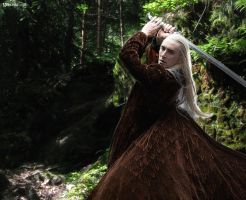Thranduil - warrior in the woods by Menkhar