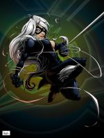 black cat color by pnutink