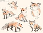 Foxes by LCibos
