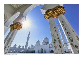 Sheikh Zayed Mosque by tyt2000