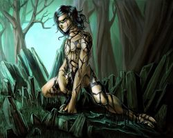 one night in the forest by rastida