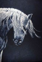 Study of a horse in paynes gray by Lara-Shychoski