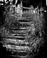 Darkened Stairs by NJM1112